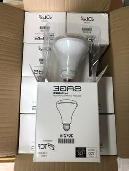 SAGE BY HUGHES 207216 LED LIGHT BULB OUTDOOR/INDOOR SECURITY
